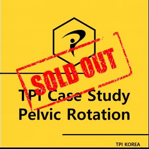 TPI Case Study